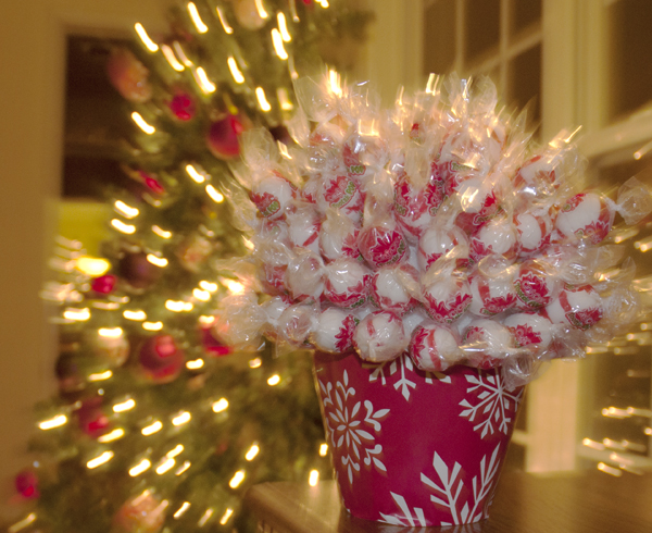 The Christmas Candy Flower Pot from www.hannahandharley.com