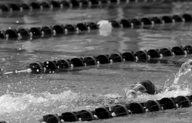 A swimmer at meet.